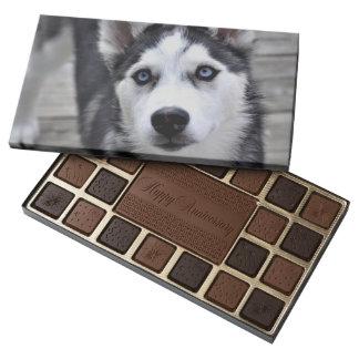 Perrito fornido caja de bombones variados con 45 piezas