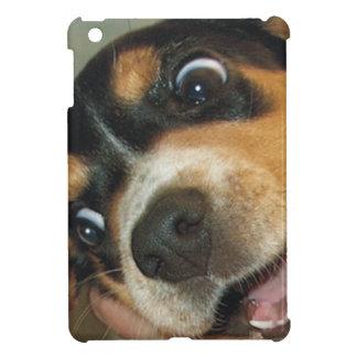 Perrito grande del beagle de los ojos