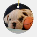 Perrito inglés del baloncesto del dogo ornato