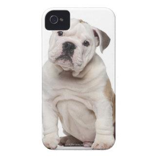 Perrito inglés del dogo (2 meses) iPhone 4 Case-Mate coberturas