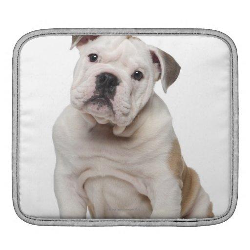 Perrito inglés del dogo (2 meses) mangas de iPad