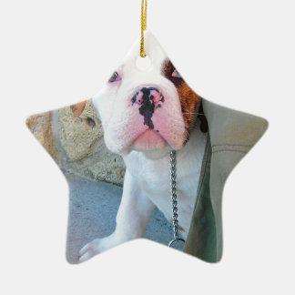 Perrito inglés del dogo de Olde Ornamento De Navidad