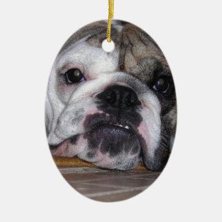 Perrito inglés del dogo ornamento de reyes magos
