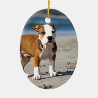 perrito inglés del dogo en la playa adorno navideño ovalado de cerámica