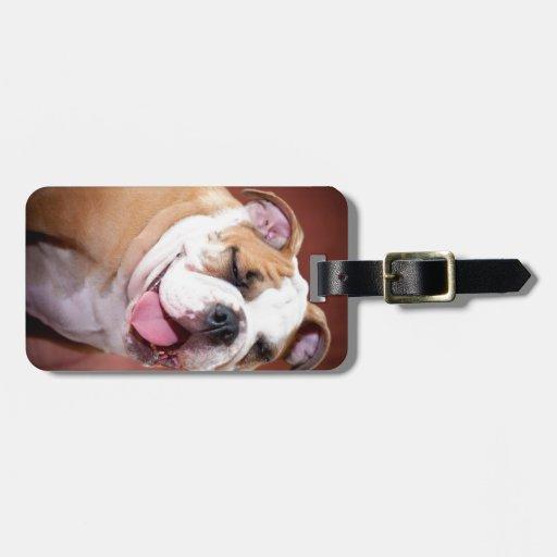 Perrito inglés del dogo etiquetas bolsas