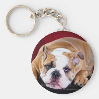 Perrito inglés del dogo llaveros personalizados