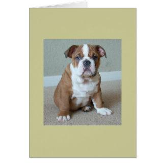 Perrito inglés del dogo tarjeta de felicitación