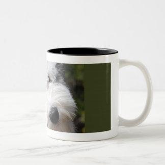 perrito inglés viejo del perro pastor taza de café
