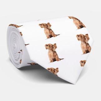 Perrito joven que escucha la música en los corbatas personalizadas