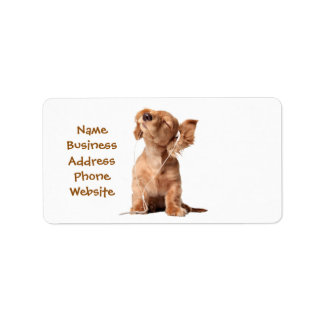 Perrito joven que escucha la música en los etiquetas de dirección