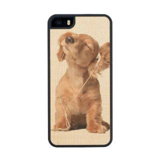 Perrito joven que escucha la música en los funda de madera para iPhone 5