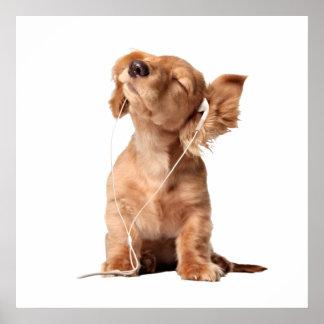 Perrito joven que escucha la música en los póster