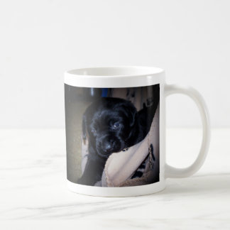 perrito juguetón tazas de café