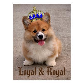 Perrito leal y real del Corgi Postales