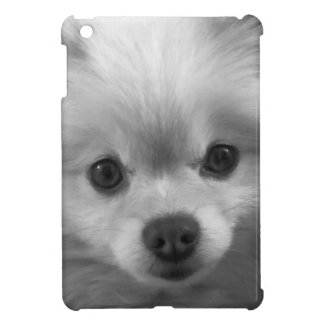 Perrito lindo adorable de Pomeranian