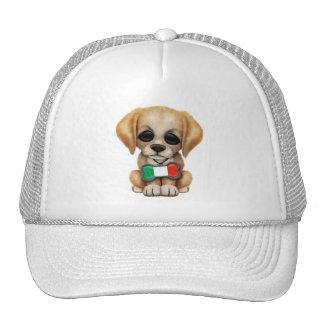 Perrito lindo con la etiqueta italiana del mascota gorra