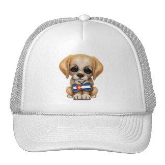 Perrito lindo con la placa de identificación de la gorras de camionero