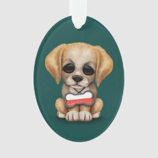 Perrito lindo con la placa de identificación polac