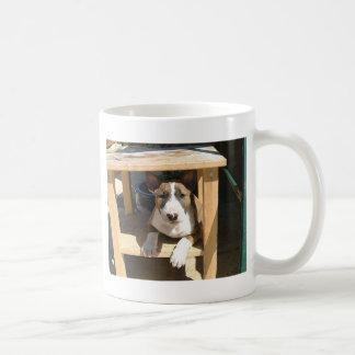 Perrito lindo de bull terrier del inglés taza de café