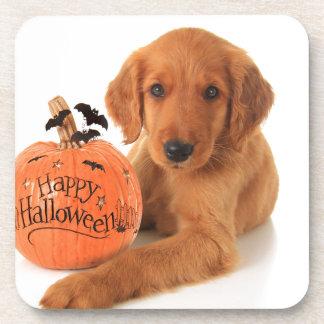 Perrito lindo de Halloween con una calabaza Posavasos De Bebidas