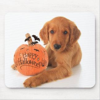 Perrito lindo de Halloween con una calabaza Alfombrilla De Raton