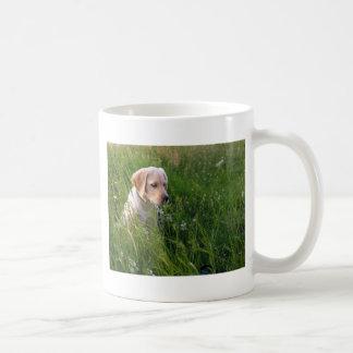 Perrito lindo de Labrador en hierba Taza Clásica