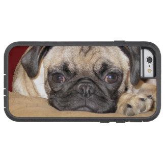 Perrito lindo del barro amasado funda de iPhone 6 tough xtreme