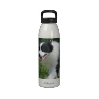 Perrito lindo del border collie botella de agua reutilizable