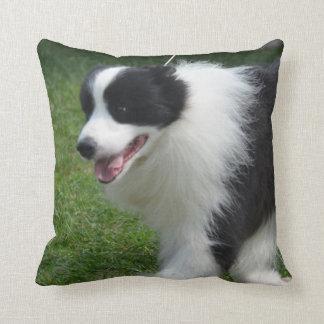 Perrito lindo del border collie almohada