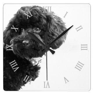 Perrito lindo del perro blanco y negro/fotografía reloj de pared