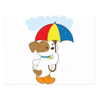 Perrito lindo en lluvia postal