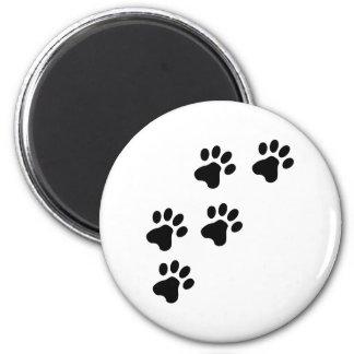 perrito lindo negro de las patas del perro imán