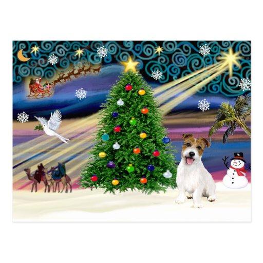Perrito mágico de Jack Russell Terrier del navidad Tarjetas Postales