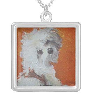 Perrito maltés en el collar anaranjado del fondo