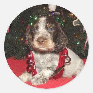 Perrito melado del navidad del perro de aguas de pegatina redonda