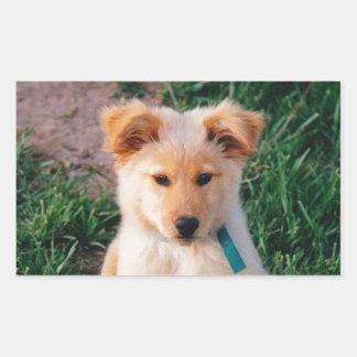 Perrito mezclado adorable de la raza pegatina rectangular