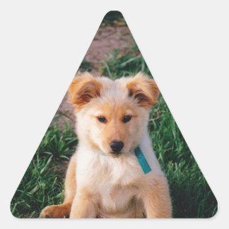 Perrito mezclado adorable de la raza pegatina triangular