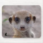 Perrito Mousepad de Meerkat Tapete De Ratones