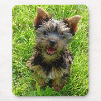 Perrito Mousepad de Yorkshire Terrier del amor Tapete De Raton