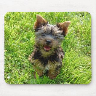 Perrito Mousepad de Yorkshire Terrier del amor Tapetes De Raton