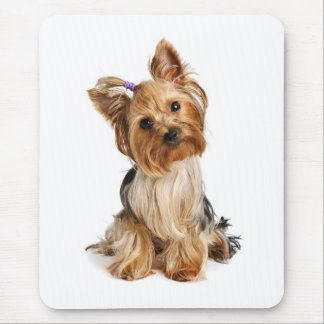 Perrito Mousepad de Yorkshire Terrier del amor Alfombrillas De Raton