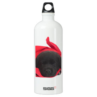 Perrito negro de Labrador