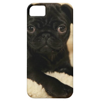 Perrito negro del barro amasado funda para iPhone 5 barely there