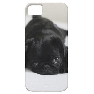 Perrito negro del barro amasado funda para iPhone SE/5/5s