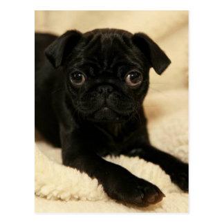 Perrito negro del barro amasado postales
