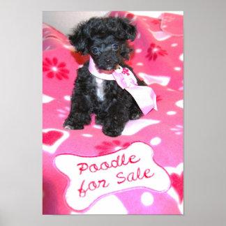 Perrito negro del caniche de juguete para el poste