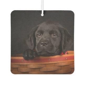 Perrito negro del labrador retriever en una cesta