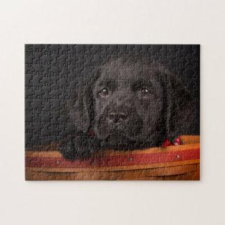 Perrito negro del labrador retriever en una cesta puzzle