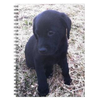 Perrito negro del labrador retriever libro de apuntes