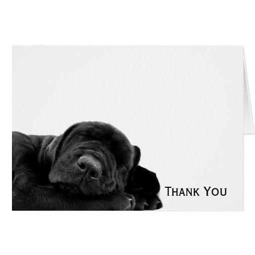 Perrito negro el dormir tarjeta pequeña